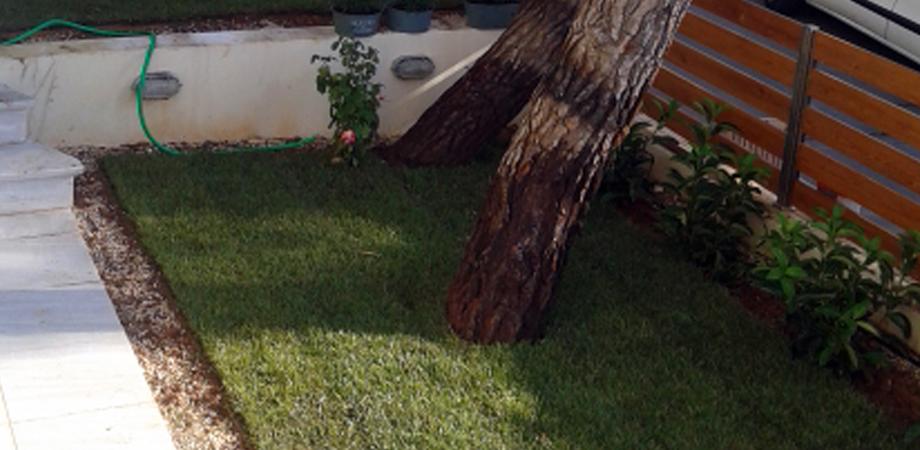 η εταιρεία μας αναλαμβάνει με επιτυχία τη διαμόρφωση κήπων στην Πεντέλη