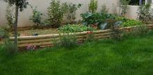 Ο κήπος που ονειρεύεστε μπορεί να γίνει εύκολα πραγματικότητα  σε όλη την περιοχή των Βριλησσίων